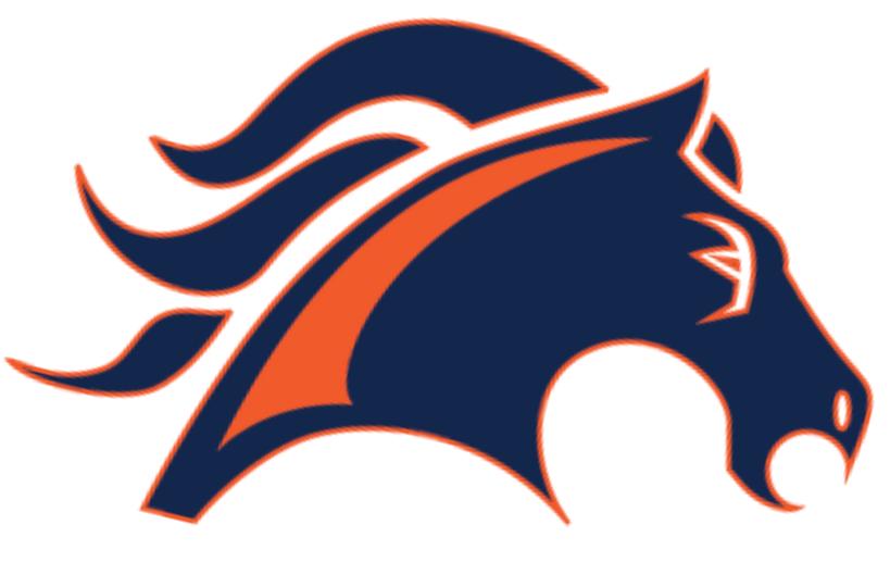 Kalaheo Mustangs Athletic Foundation